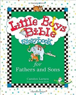 Little Boys Bible Storybook: Dad & Son