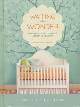 Waiting In Wonder – Growing in Faith While You're Expecting (NETT)
